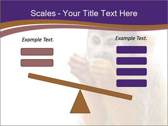 African Monkey PowerPoint Templates - Slide 89