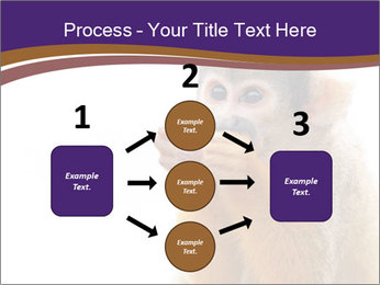 African Monkey PowerPoint Templates - Slide 92