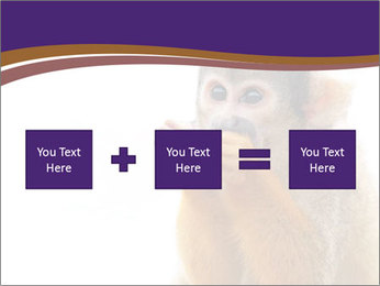 African Monkey PowerPoint Template - Slide 95