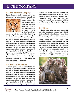 0000089312 Word Template - Page 3