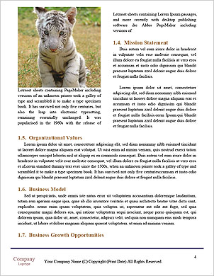 0000089312 Word Template - Page 4