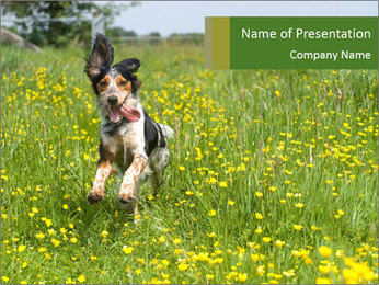 Happy Dog PowerPoint Template - Slide 1