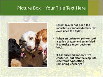 Happy Dog PowerPoint Templates - Slide 13