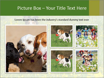 Happy Dog PowerPoint Template - Slide 19