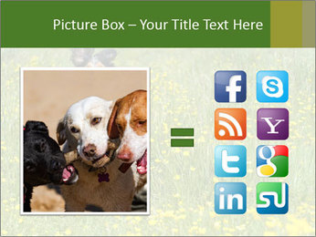 Happy Dog PowerPoint Template - Slide 21