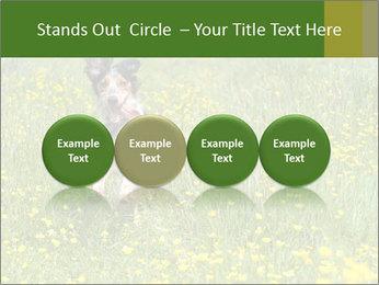 Happy Dog PowerPoint Templates - Slide 76
