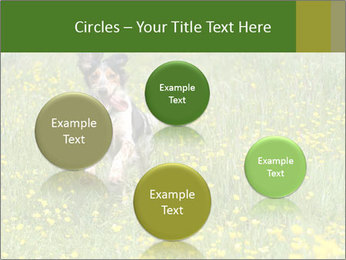 Happy Dog PowerPoint Template - Slide 77