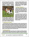 0000089314 Word Templates - Page 4