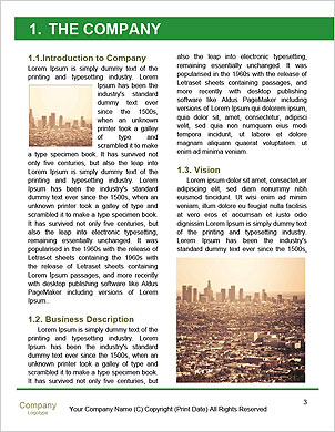 0000089316 Word Template - Page 3