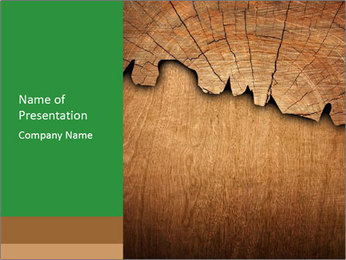 Slice Of Wood PowerPoint Template - Slide 1