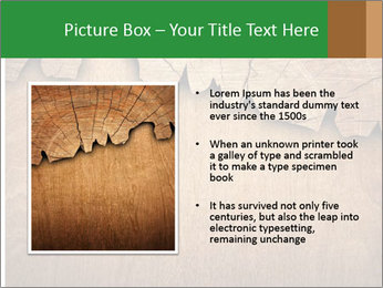 Slice Of Wood PowerPoint Template - Slide 13