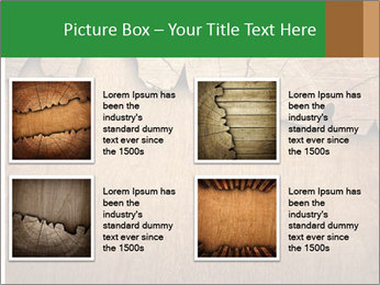 Slice Of Wood PowerPoint Template - Slide 14