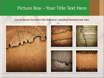 Slice Of Wood PowerPoint Template - Slide 19