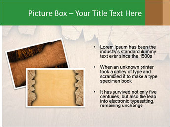 Slice Of Wood PowerPoint Template - Slide 20