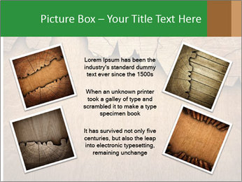 Slice Of Wood PowerPoint Template - Slide 24