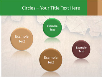Slice Of Wood PowerPoint Template - Slide 77
