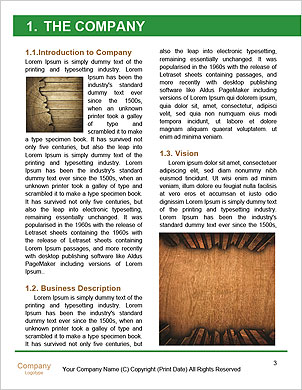 0000089320 Word Template - Page 3