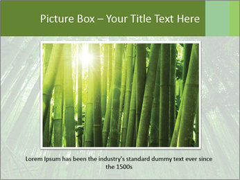 Green Landscape In Japan PowerPoint Templates - Slide 15