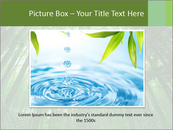Green Landscape In Japan PowerPoint Templates - Slide 16