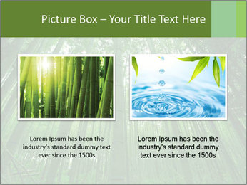 Green Landscape In Japan PowerPoint Templates - Slide 18