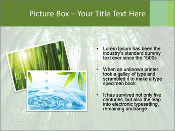 Green Landscape In Japan PowerPoint Templates - Slide 20