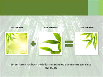 Green Landscape In Japan PowerPoint Templates - Slide 22
