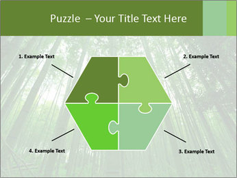 Green Landscape In Japan PowerPoint Templates - Slide 40