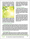 0000089321 Word Templates - Page 4