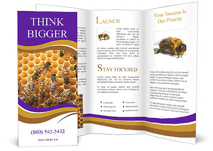 0000089324 Brochure Template