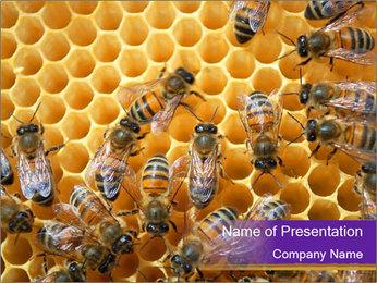 Beekeeping PowerPoint Templates - Slide 1