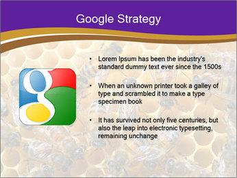 Beekeeping PowerPoint Templates - Slide 10