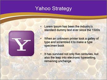 Beekeeping PowerPoint Templates - Slide 11