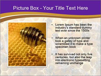 Beekeeping PowerPoint Templates - Slide 13