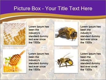 Beekeeping PowerPoint Templates - Slide 14