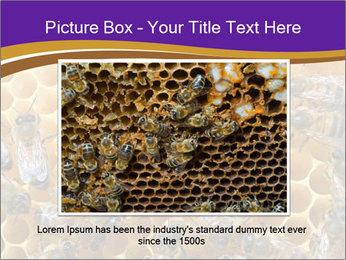 Beekeeping PowerPoint Templates - Slide 15