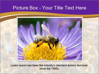 Beekeeping PowerPoint Templates - Slide 16