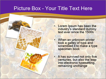Beekeeping PowerPoint Templates - Slide 17