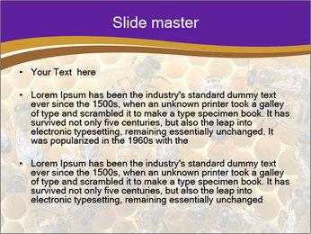Beekeeping PowerPoint Templates - Slide 2