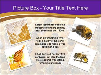 Beekeeping PowerPoint Templates - Slide 24
