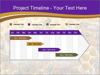 Beekeeping PowerPoint Templates - Slide 25