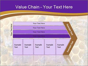 Beekeeping PowerPoint Templates - Slide 27