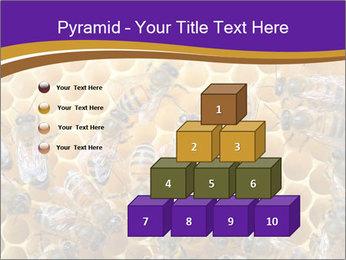 Beekeeping PowerPoint Templates - Slide 31
