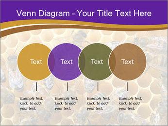 Beekeeping PowerPoint Templates - Slide 32