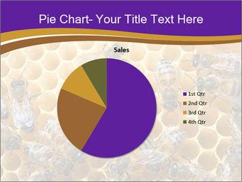 Beekeeping PowerPoint Templates - Slide 36