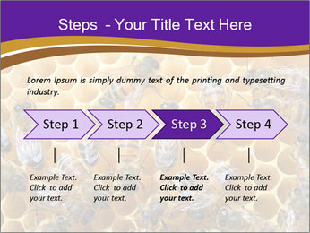 Beekeeping PowerPoint Templates - Slide 4