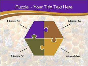Beekeeping PowerPoint Templates - Slide 40