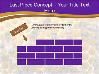 Beekeeping PowerPoint Templates - Slide 46