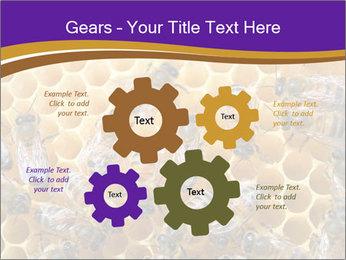 Beekeeping PowerPoint Templates - Slide 47