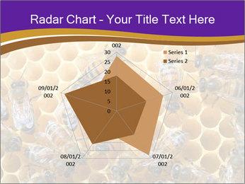 Beekeeping PowerPoint Templates - Slide 51