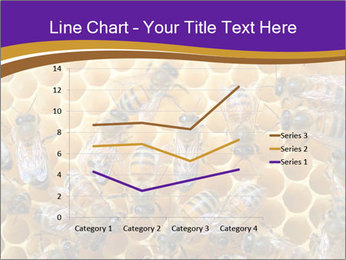 Beekeeping PowerPoint Templates - Slide 54